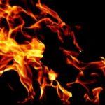 fire1-300x225